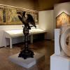 Wunderkammer - Museo Correr, Venezia