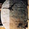 Giandomenico Tiepolo (1727 - 1804) Falchetto (1790),  A luce radente con tassello di pulitura Affresco staccato , cm. 175 x 130 Venezia, Ca' Rezzonico - Museo del Settecento Veneziano, Sala 13